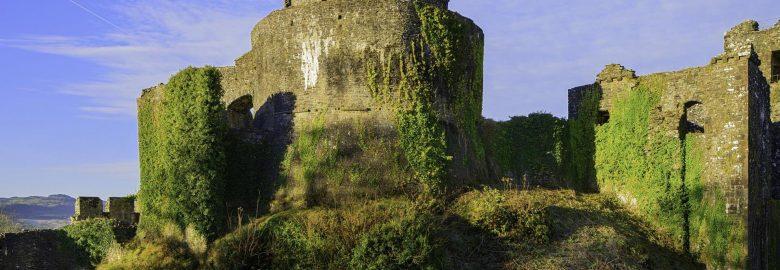Dinefwr Castle
